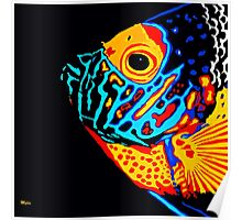 Angel Fish Swimming in the Deep Poster
