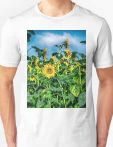 Sunflower Field T-Shirt