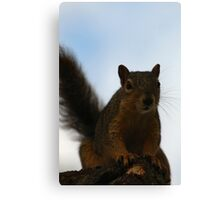 Your Canon doesn't shoot Peanuts...Does it?  Canvas Print