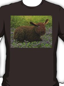 """He's just a little """"hare-y"""" T-Shirt"""