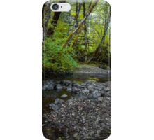 Low Water ~ Whittaker Creek ~ iPhone Case/Skin