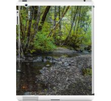 Low Water ~ Whittaker Creek ~ iPad Case/Skin
