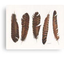 Pheasant roadkill Canvas Print
