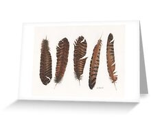 Pheasant roadkill Greeting Card