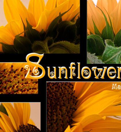 Sunflower Macro Collage Scrapbook Page Sticker