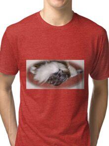 Cotton-top Tamarin Tri-blend T-Shirt