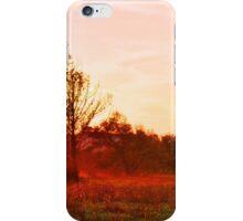 DEER AT SUNSET iPhone Case/Skin