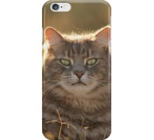 King Critter iPhone Case/Skin