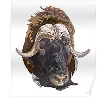 Hand drawn vector illustration of a musk ox s head Poster