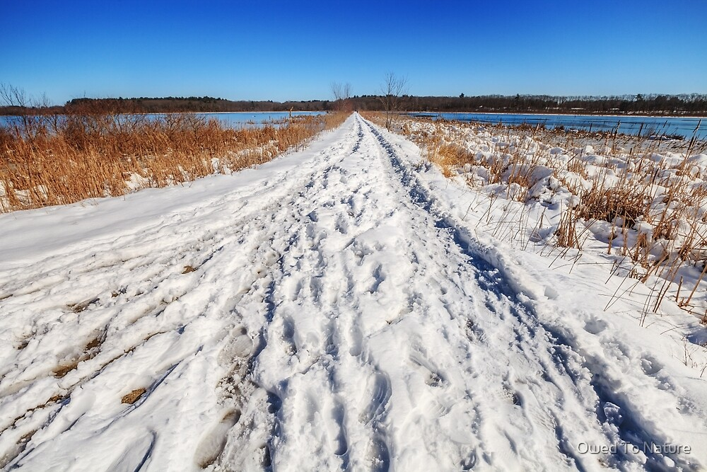 Long winter's walk by Owed To Nature