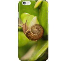 Little snail iPhone Case/Skin