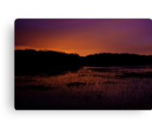 Lavender haze of night – Great Meadows series Canvas Print