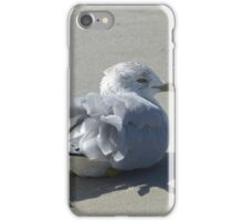 Ruffled Feathers iPhone Case/Skin