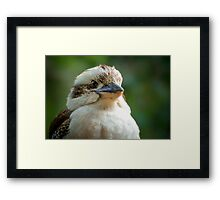 Ready for my Close Up... Framed Print