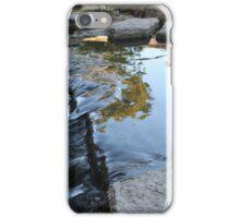 Miniature Waterfall iPhone Case/Skin