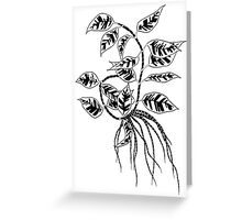 Leaves and Roots  Greeting Card