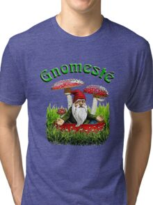 Gnomeste - WhatIf Design and More Tri-blend T-Shirt