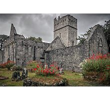 Muckross Abbey - Killarney - County Kerry - Ireland Photographic Print