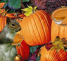 ❀◕‿◕❀SQUIRREL-PUMPKINS-AND PUMPKIN PIE-HAPPY UPCOMING THANKSGIVING TO ALL CANADIANS ON THIS DAY OF THANKS AND REFLECTION❀◕‿◕❀ by ✿✿ Bonita ✿✿ ђєℓℓσ