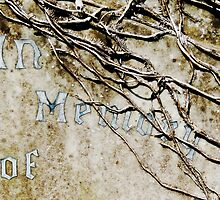 In Memory of... by Alexandra Lavizzari