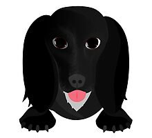Cute English Cocker Spaniel Dog Lover Gifts by 8milesfromhome