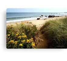 Block Island Pathway to the Sea Canvas Print