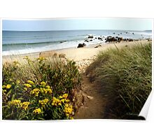 Block Island Pathway to the Sea Poster