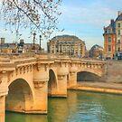 Pont Neuf .. Oldest Bridge Across The Seine by Michael Matthews