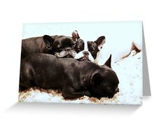 FB puppy pile Greeting Card