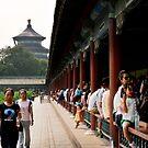 Temple of Heaven, Beijing by Nick Coates