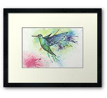 Hummingbird watercolor  Framed Print