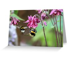 Busy Little Bees Greeting Card