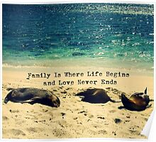 Family quote beach ocean sea lions Poster