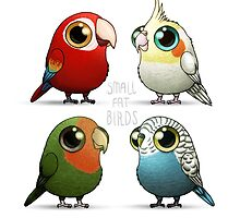 Small Fat Parrots by Demmy