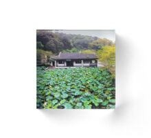 """Field of Plants"", Photo / Digital Painting  Acrylic Block"