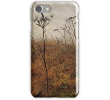 Along the Hedgerows iPhone Case/Skin
