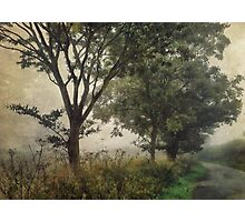 Walking to Hellington Hill Photographic Print
