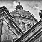 Cathedral Of The Sacred Heart #1 by Tim Nault