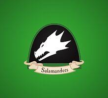 Salamanders - Chapter - Warhammer by moombax