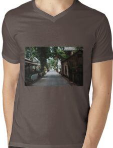 Downtown St. Augustine Alley Mens V-Neck T-Shirt