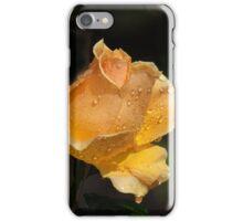 Summer Roses - Misty Orange-Gold iPhone Case/Skin