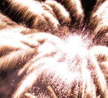 Flower fireworks Sticker