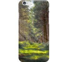 Bowmont Forest iPhone Case/Skin
