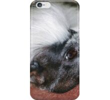 Cotton-top Tamarin iPhone Case/Skin