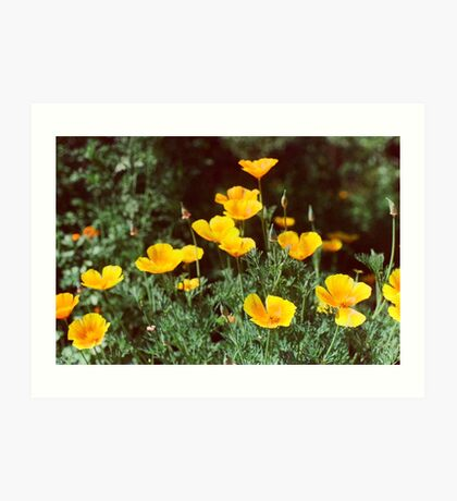 Yellow Flowers Phone Cases Art Print