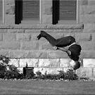 Back Flip by Chet  King
