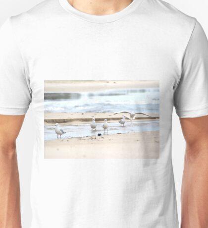vision of flight Unisex T-Shirt