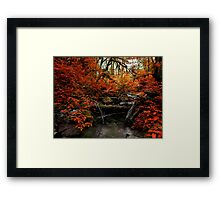 The Fall ~ Oregon Fall Colors ~ Framed Print