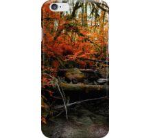 The Fall ~ Oregon Fall Colors ~ iPhone Case/Skin