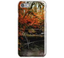The Fall ~ Oregon Fall Colors ~ iPhone Case/Skin